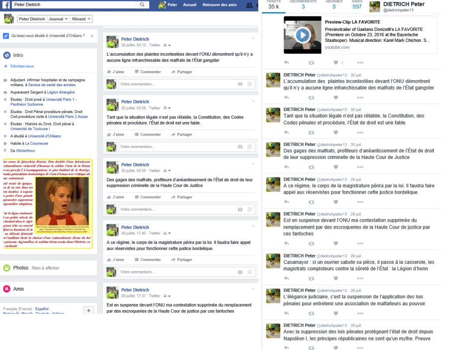 Facebook et Twitter activités antipolitiques